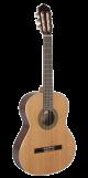 Paco Castillo Guitar 201