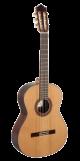 Paco Castillo Guitar 203
