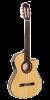 Paco Castillo Guitar 233FTE